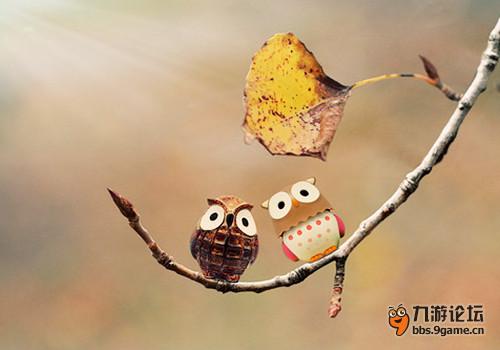 动物休闲诗意图片