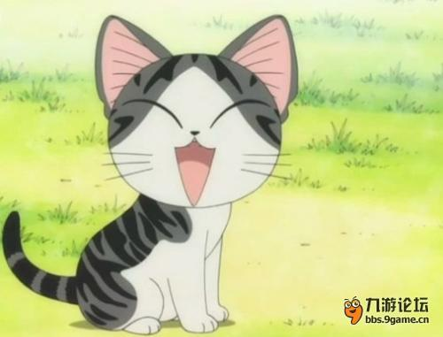 色蝴蝶结的小白猫