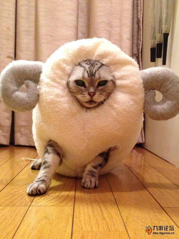 羊年神兽 神雕侠侣
