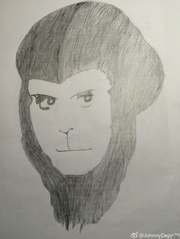 素描猴子的步骤图
