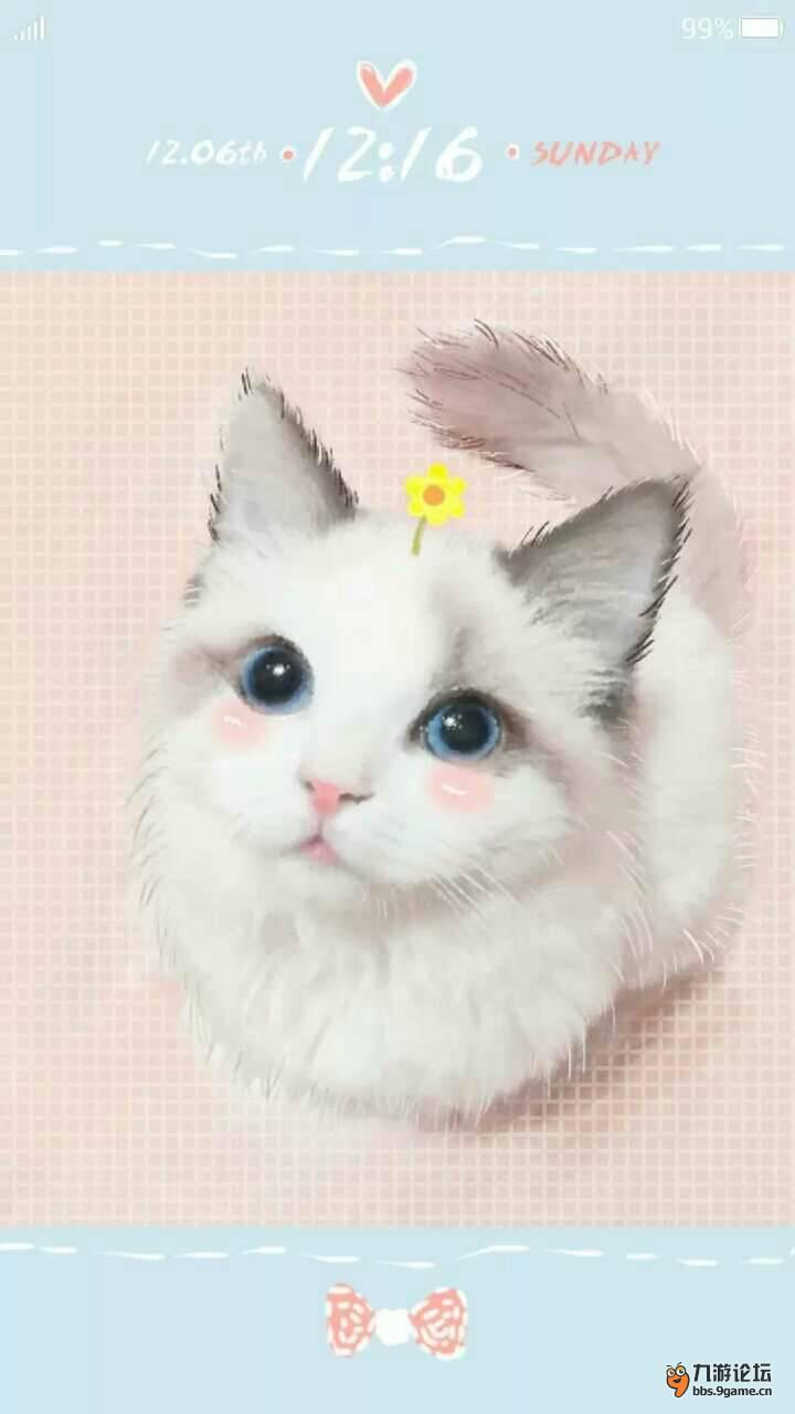 翻身的小猫可爱图片