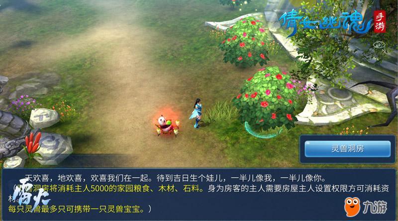 图6:万寿林场景寻找神奇树.jpg