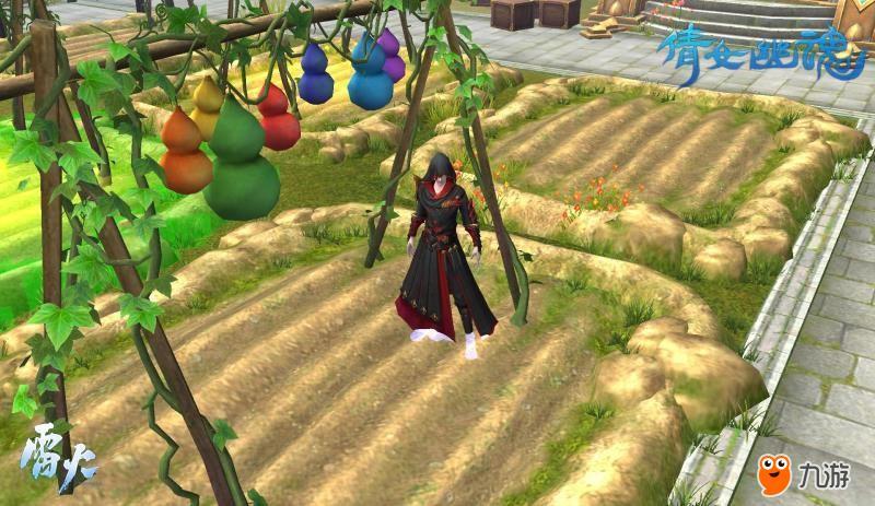 图6:种植葫芦,保卫家园.jpg