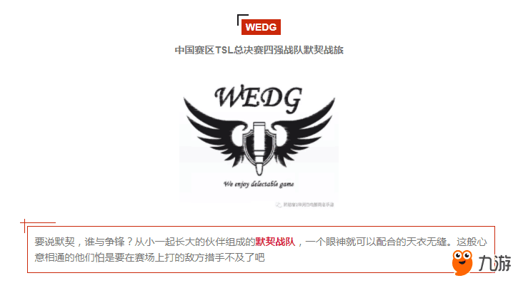 7s战队介绍.png