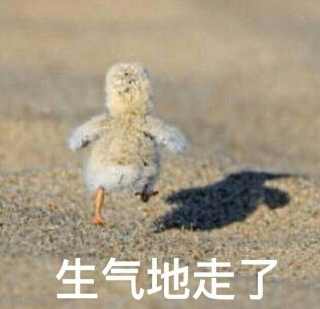 qq_pic_merged_1569997919611.jpg
